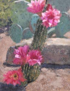 Sonoran Flower
