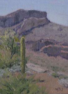 Sonoran Study 2